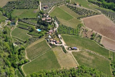AGRITURISMO WITH VINEYARDS FOR SALE, CHIANTI