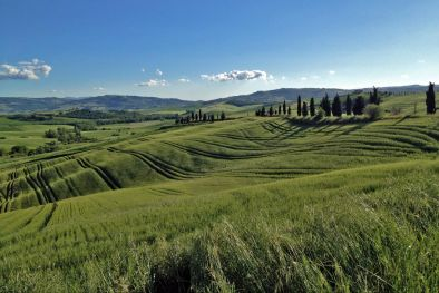 AGRITURISMO VAL D'ORCIA